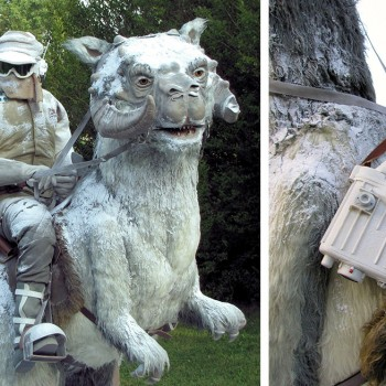 Luke Skywalker on Taun Taun 1